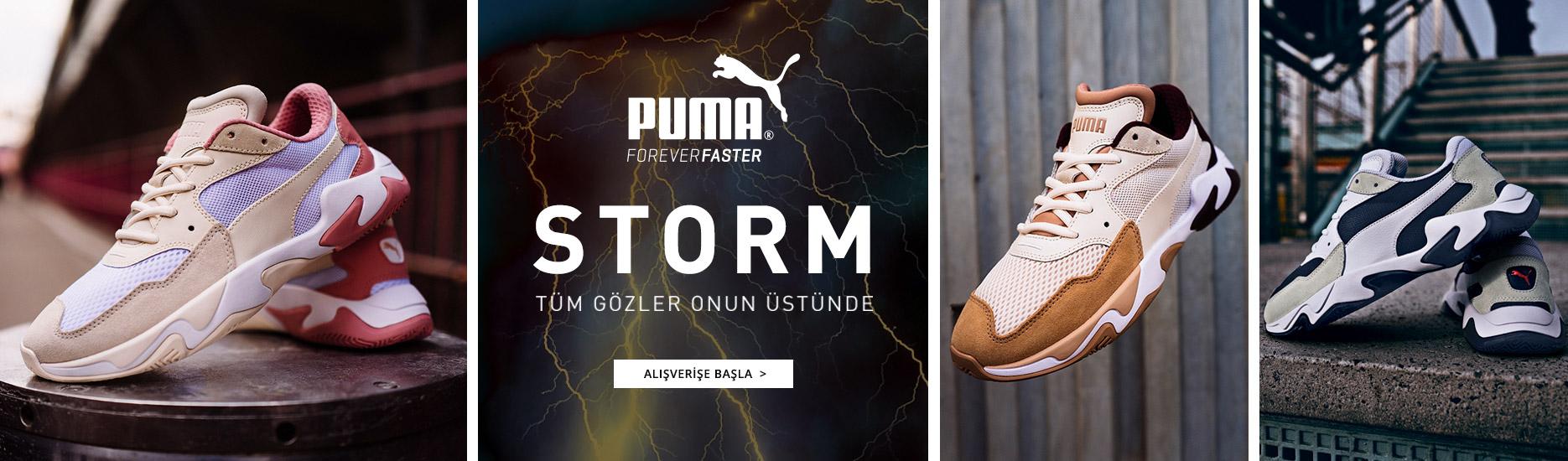 Puma-storm